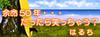 Haruchi_banner_06